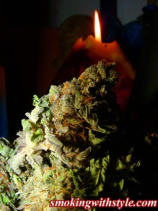 marijuana-photo11
