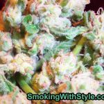 marijuana-photo9