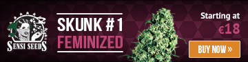 sensiseeds.com » feminized seeds » white label seeds » skunk #1 feminized