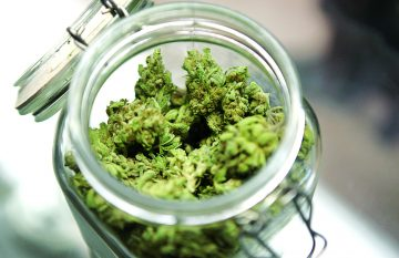 Medical Cannabis in a jar.