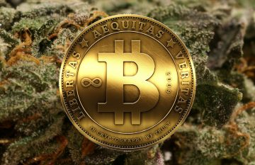 bitcoin and legalized marijuana