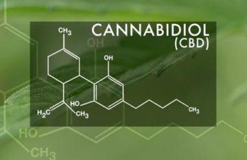 cannabidiol