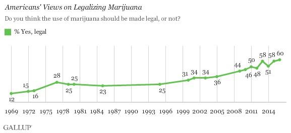 Cannabis Growth Chart